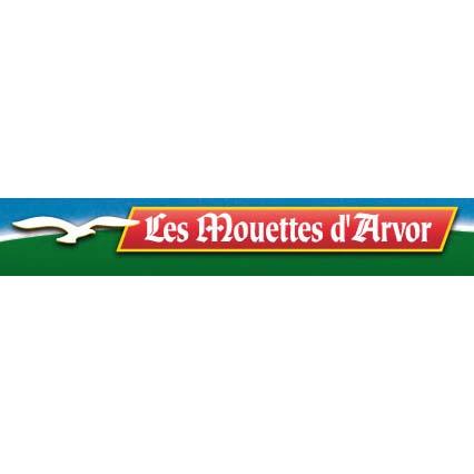 LES MOUETTES D'ARVOR